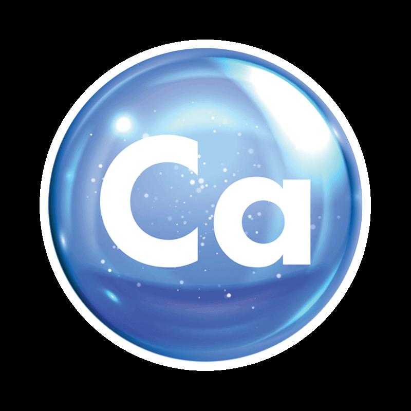 Calcium Inset 800px